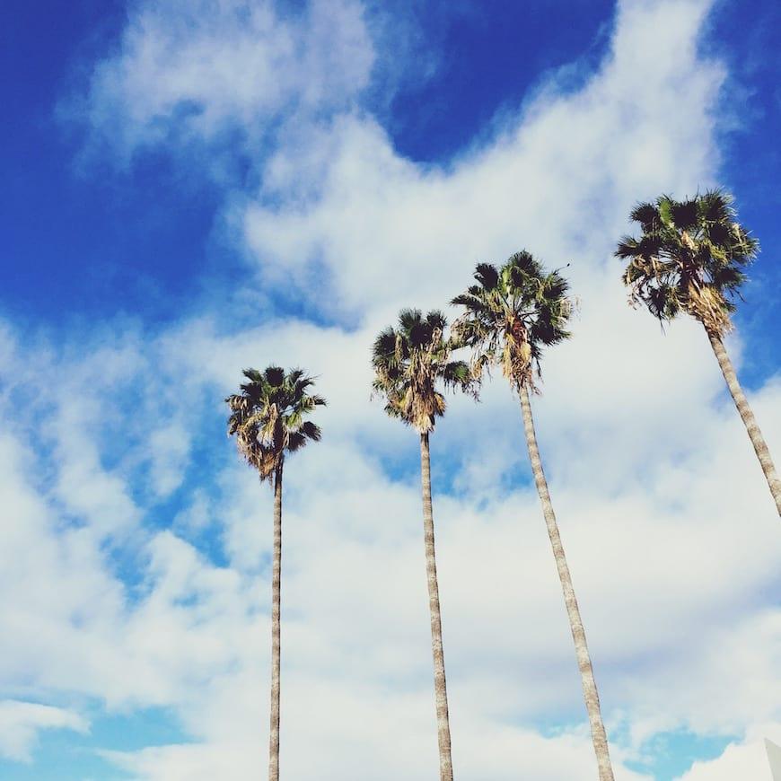 Gaby's Guide to Santa Barbara