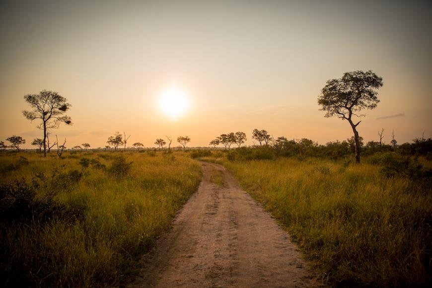 betwa让球加比的狩猎指南(南非+博茨瓦纳)